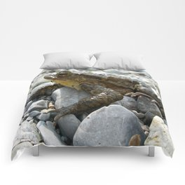 Bufo Bufo Toad Lounging On Stones Comforters