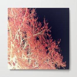Inverted Tree Dark Night Metal Print