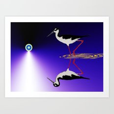 stilt bird Art Print