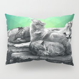 Echoes of a Lullaby / Geometric Moon Pillow Sham