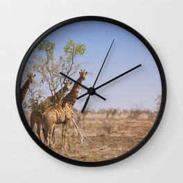 Giraffes in Kruger National Park, South Africa Wall Clock