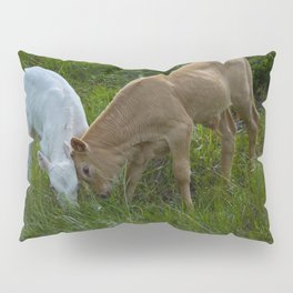 Sibling Rivalry Pillow Sham