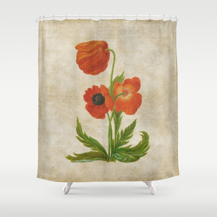 Vintage Painting  Bunch Of Poppies Poppy Flower Floral Shower Curtain