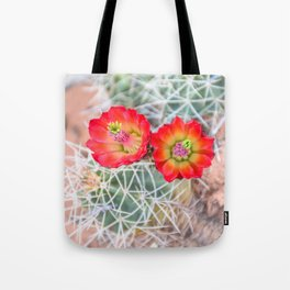 Mojave Mound Cactus Flowers Tote Bag