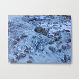 Freeze Dried Metal Print