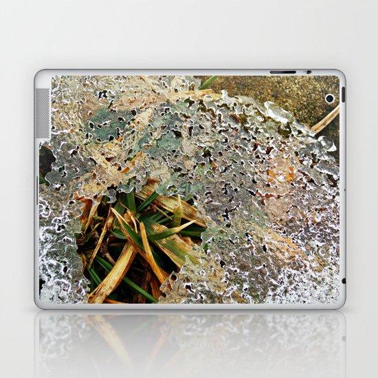 Nature Frozen Over Laptop & iPad Skin