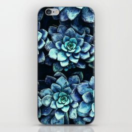 Blue And Green Succulent Plants iPhone Skin