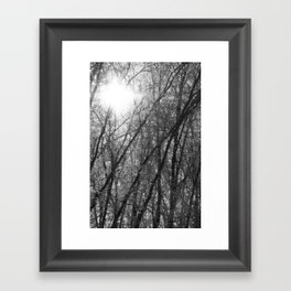 Michigan Winter - Whiteout 2 Framed Art Print