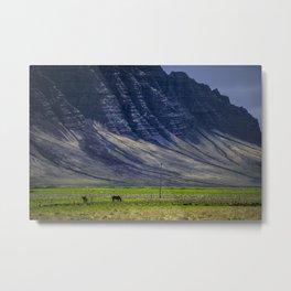 Grazing Horses - Iceland Metal Print