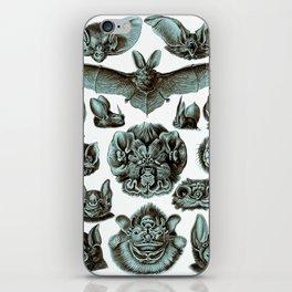 Ernst Haeckel Bats Moonlight iPhone Skin