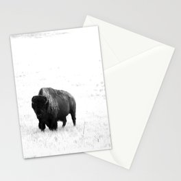 A Bison - Monochrome Stationery Cards