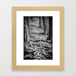 Rootway 2012 - black edition Framed Art Print