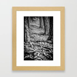 Rootway 2012 - black edition Framed Art Print