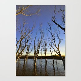 The dead forest. Iceland Canvas Print