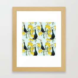 Tuis in the Kowhai Flowers Framed Art Print