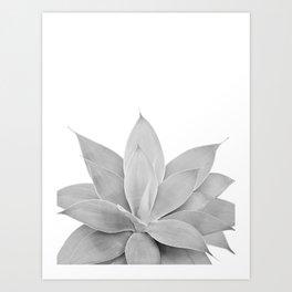 Gray Agave #1 #tropical #decor #art #society6 Art Print