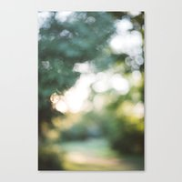 blur Canvas Prints featuring blur by Whitney Retter