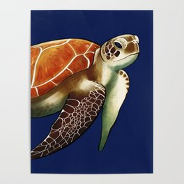 Return to Sea Poster