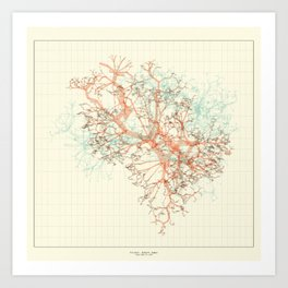 Arbor Ludi: Fischer Art Print