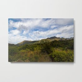 Scenic Greenery- New Zealand Metal Print