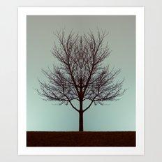 Branching into Symmetry Art Print
