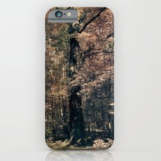 Tales from the trees 3 iPhone 6s Slim Case