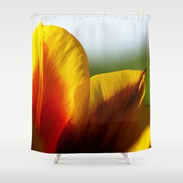 Why I Am Shower Curtain