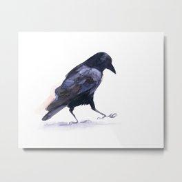Crow #2 Metal Print