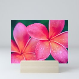 Aloha Hawaii Kalama O Nei Pink Tropical Plumeria Mini Art Print
