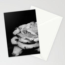 Park, 2014 Stationery Cards