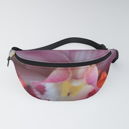 Chinese, If You Please Fanny Pack