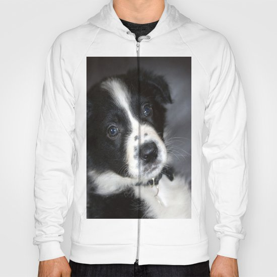 I Love My Dog as Much as I love you! Hoody