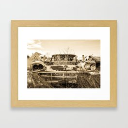 Thunderbird Field Framed Art Print