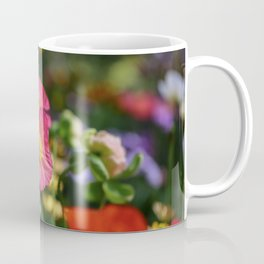 Frivolous Blooming Coral, Red and Yellow Anemones in Spring Coffee Mug