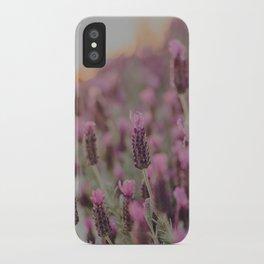 Lavender Stories iPhone Case