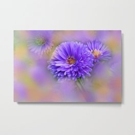 the beauty of a summerday -154- Metal Print