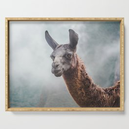Curious, wise looking guanaco / llama on a misty morning in the Andes mountains, Peru Serving Tray