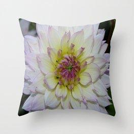 Dahlia Pastel Tones Throw Pillow