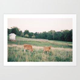 Ohio Serenity Art Print