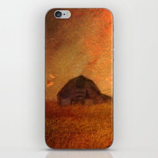 Amber Waves of Grain iPhone & iPod Skin