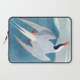 Arctic Tern James Audubon Vintage Scientific Illustration American Birds Laptop Sleeve