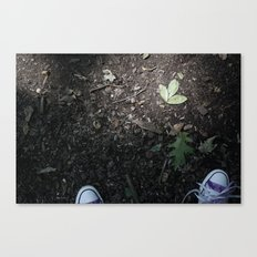 Converse and the leaf Canvas Print