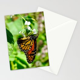 monarch butterfly - increasingly extinct species Stationery Cards