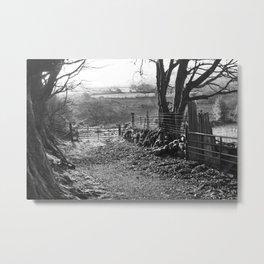 Winter Path in Wicklow Metal Print