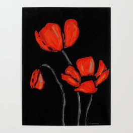 Red Poppies On Black by Sharon Cummings Poster