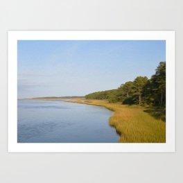 Marsh and Pines Art Print