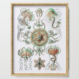 Ernst Haeckel - Trachomedusae (Jellyfish) Serving Tray