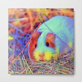 SmartMix Animal - Guinea Pig 3 Metal Print