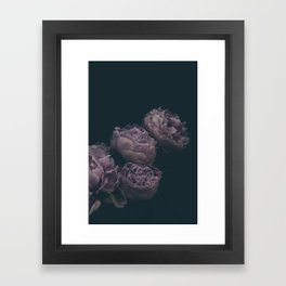 Dramatic Bunch of Peonies   Modern Floral Photography   Nature Framed Art Print