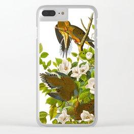 Carolina Pigeon Vintage Illustration Clear iPhone Case